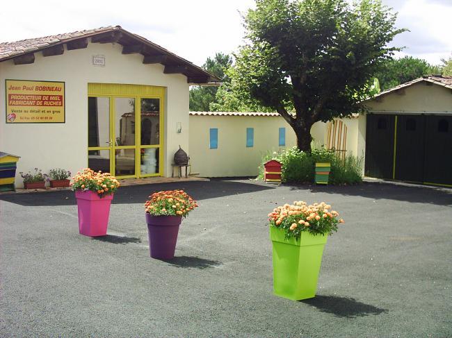 Apiculture BOBINEAU-Credit-M-bobineauBy-NC-ND-4-0-miel-fr-M-bobineau-By-NC-ND-4-0