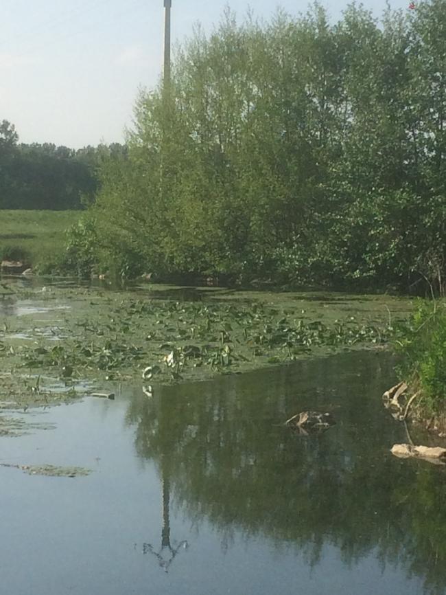 Pêche dans le ruisseau du Meunet-Credit-OFFICE-DE-TOURISME-DES-CHAMPS-D-AMOUR