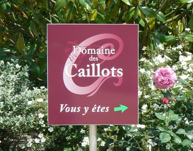 Domaine des Caillots-Credit-Logo-du-Domaine-Entree-du-Domaine-fr-Entree-du-Domaine-Groupe-Caveau-fr-Groupe--Caveau-photo-bouteille-Domaine-des-Caillots-Val-de-Loire-BL-Medium-fr-Bouteille-de-Blanc-Sauvignon