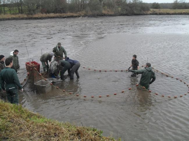 Pêche de l'étang de Bellebouche-Credit-OT-Mezieres-en-Brenne
