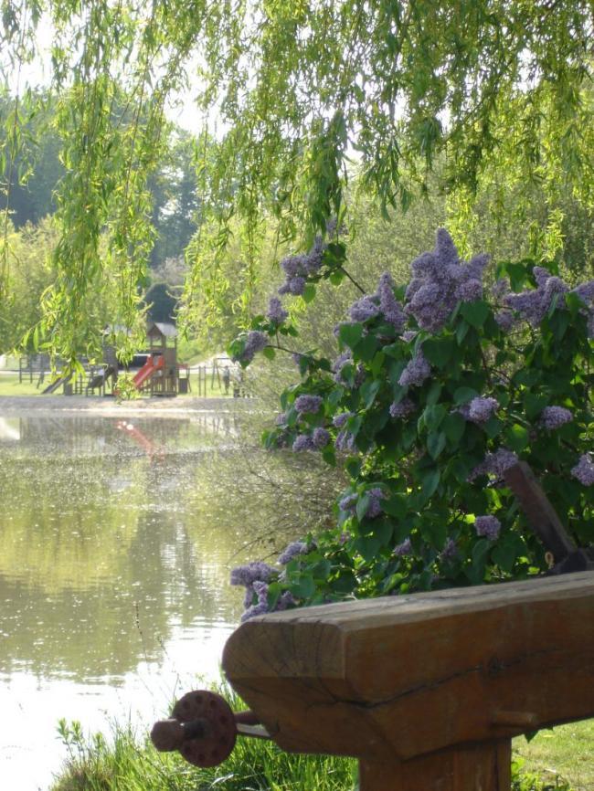 Pêche, baignade, aire de jeux, tennis aux étangs de la Planche Baron-Credit-Mairie-Villentrois-Plan-d-eau-Villentrois-2-fr-Mairie-Villentrois